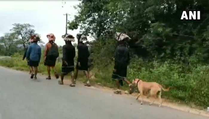 VIDEO: सबरीमाला की पैदल यात्रा पर निकला बेजुबान 'भक्त', 18 दिनों में चला 480 किलोमीटर