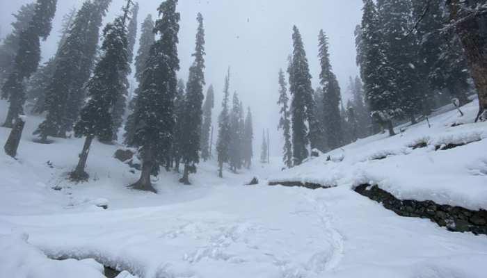 गुलमर्ग में बिछी बर्फ की चादर, खुशी से झूम रहे हैं पर्यटक