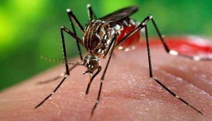 पीलीभीत: डेंगू को खौफ दिखाकर लोगों की कमाई लूट रहे हैं प्राइवेट डॉक्टर और पैथौलॉजी संचालक, नोटिस जारी