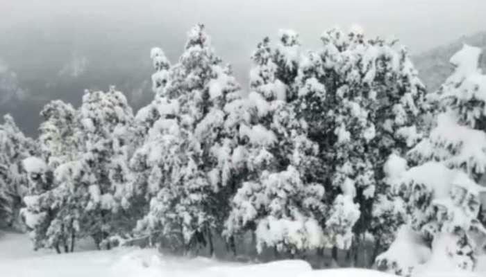औली-बद्रीनाथ में भारी बर्फबारी से बदला मौसम का मिजाज, पहाड़ों में पर्यटकों का आवागमन शुरू
