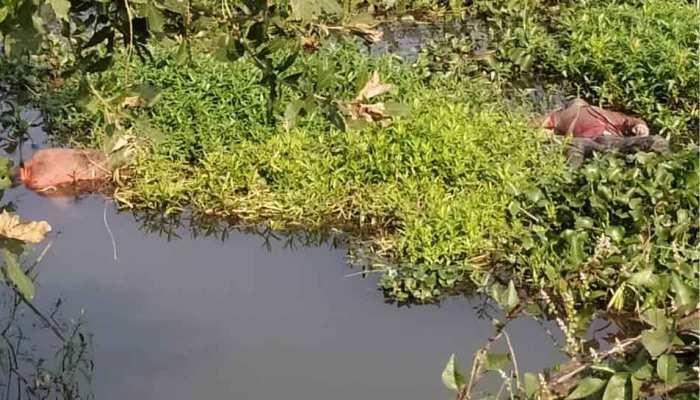 नदी में तैरता मिला प्रेमी युगल का शव, ऑनर किलिंग और सुसाइड के बीच उलझी पुलिस