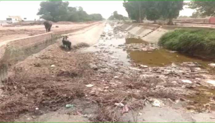 श्रीगंगानगर: नहरों की सफाई न होने से किसान परेशान, विभाग नहीं कर रहा कार्रवाई