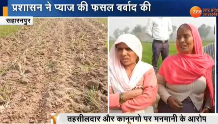 किसान ने दिखाया कोर्ट का स्टे, फिर भी लाखों की फसल पर चलवा दिया अधिकारियों ने ट्रैक्टर