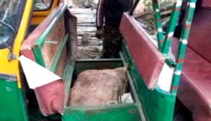 लोहरदगा: प्रतिबंधित मांस के साथ पिता-पुत्र गिरफ्तार, छापेमारी के दौरान पुलिस को मिली सफलता