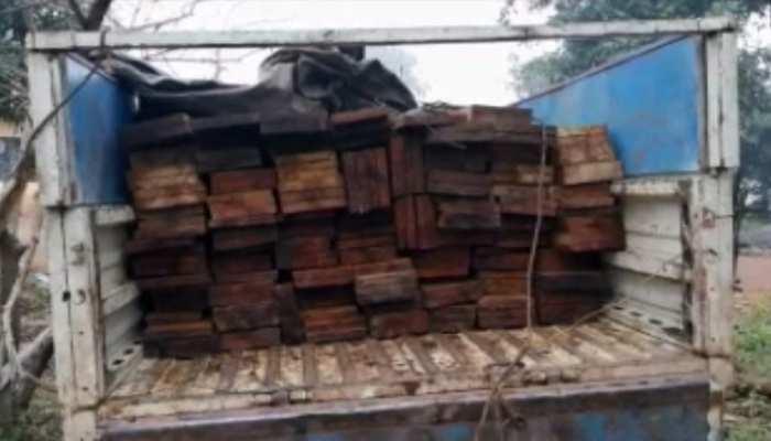 चाईबासा: वन विभाग ने की छापेमारी, वाहन समेत 3 लाख की लकड़ी को किया जब्त