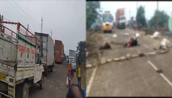 दमोह: सड़क हादसे में 8 गायों की मौत, गुस्साए ग्रामीणों ने सड़क पर लगाया जाम