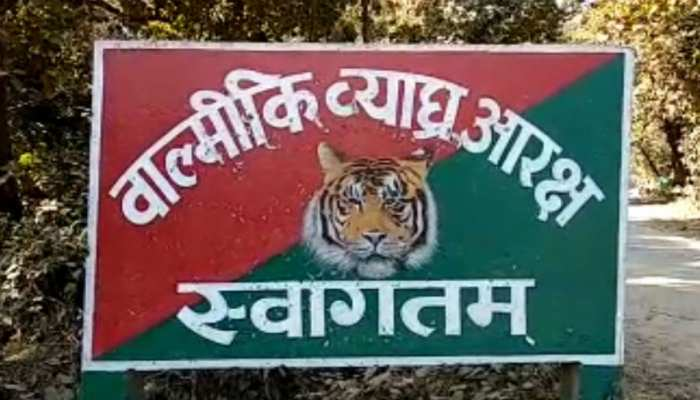 बिहार: वाल्मीकि टाइगर रिजर्व में सैलानियों के घूमने-ठहरने का किया गया खास इंतजाम