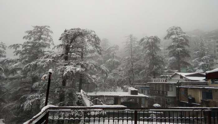 शिमला में हुई अब तक की सबसे भारी बर्फबारी... PICS में देखें सुंदर नजारे