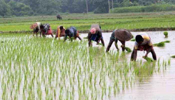 MP: डिजिटल की ओर बढ़े किसानों के कदम, 'जस्ट-इन-टाइम' एप से हो रहा भुगतान