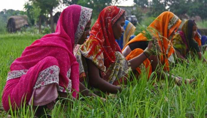 झारखंड : कृषक महिला क्रांति गुमला के खेतों में लाई 'क्रांति'