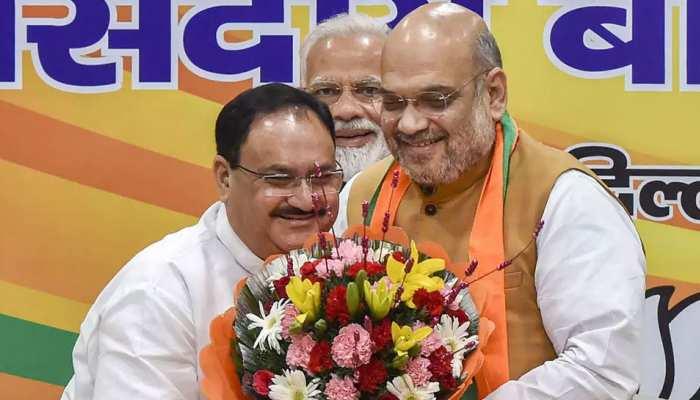 BJP को 20 जनवरी को मिलेगा नया अध्यक्ष, जेपी नड्डा की हो सकती है ताजपोशी