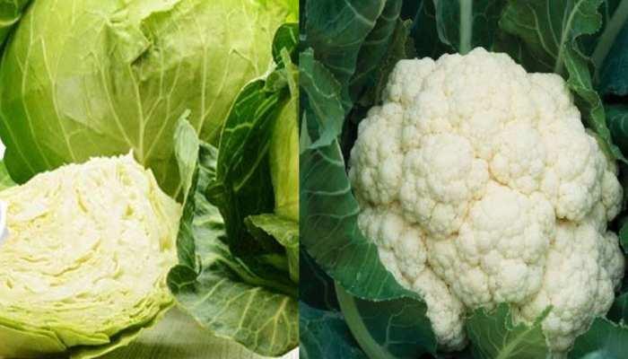 गुजरात में 1 से 5 रुपए किलो के दाम से किसान बेच रहे सब्ज़ियां