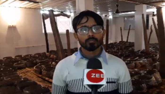 बिहार: सैकड़ों किसानों को मशरूम से हो रही बंपर कमाई, युवा इंजीनियर ने दिखाया रास्ता