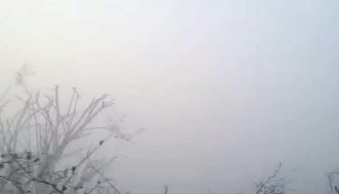 सीकर: सर्द हवाओं के साथ मौसम में बदलाव, कोहरे से लिपटा नीमकाथाना