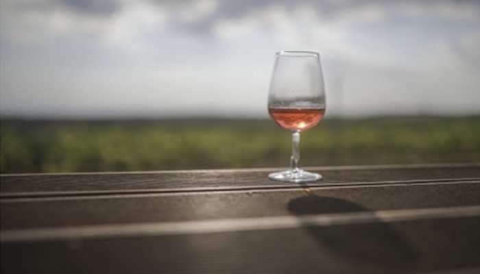 बिहार में मुसहर समाज के युवक शराबबंदी के होंगे 'ब्रांड एंबेस्डर'