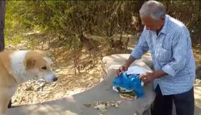 अजमेर: बेजुबान जानवरों के लिए फरिश्ता बना रेलवे से रिटायर्ड कर्मचारी, 35 सालों से...
