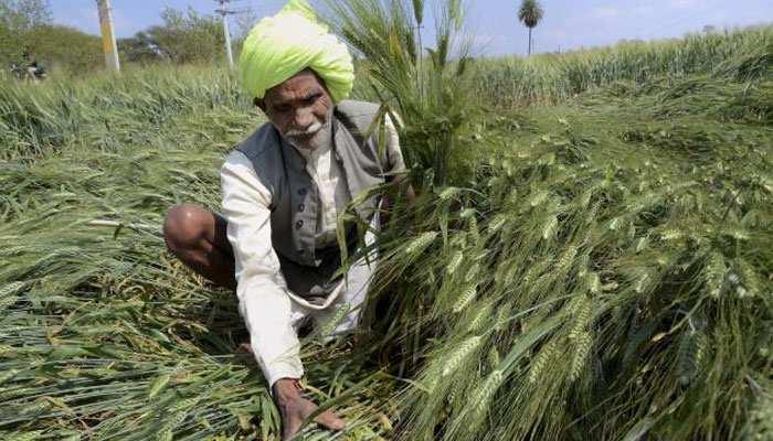 बिहार सरकार का किसानों के लिए बड़ा फैसला, फसल की कटाई में नहीं रोके जाएंगे मजदूर