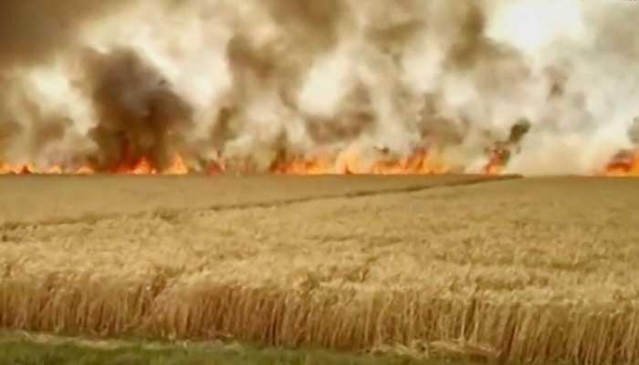 राजस्थान: गेहूं के खेत में लगी भीषण आग, दमकल विभाग भी नहीं पा सका काबू