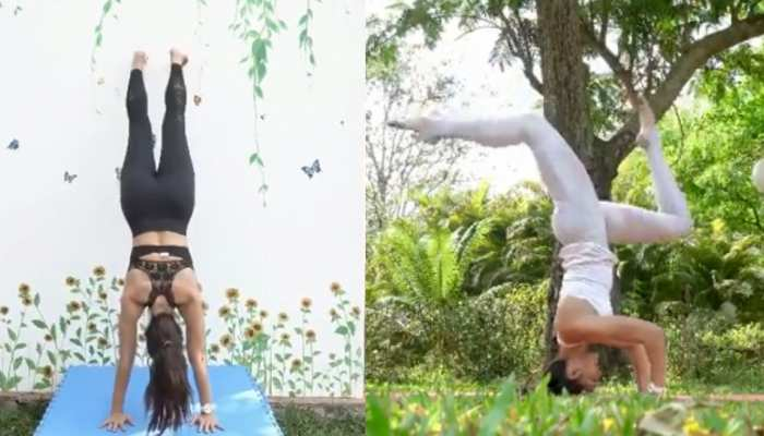 Jacqueline Fernandez के ये Fitness Video देखकर दांतों तले उंगलियां दबा लेंगे आप