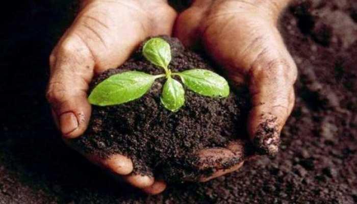 गांवों में ही युवाओं को रोजगार देने की तैयारी, कृषि क्षेत्र को विकसित करेगी सरकार