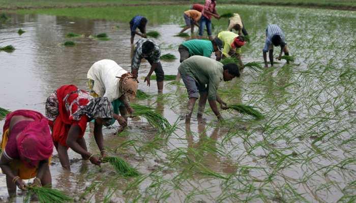 मोदी सरकार माफ करने जा रही है किसानों का 1 लाख करोड़ रुपये का कर्ज!