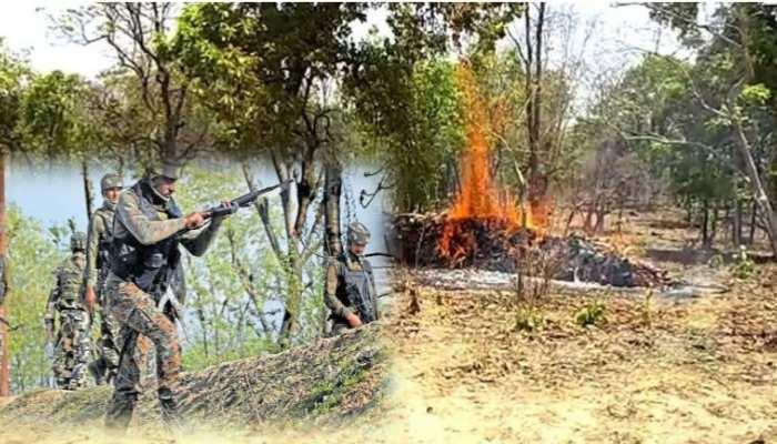 गढ़चिरौली में नक्सलियों ने जला दिया फॉरेस्ट ऑफिस, वन रेंजरों के साथ मारपीट