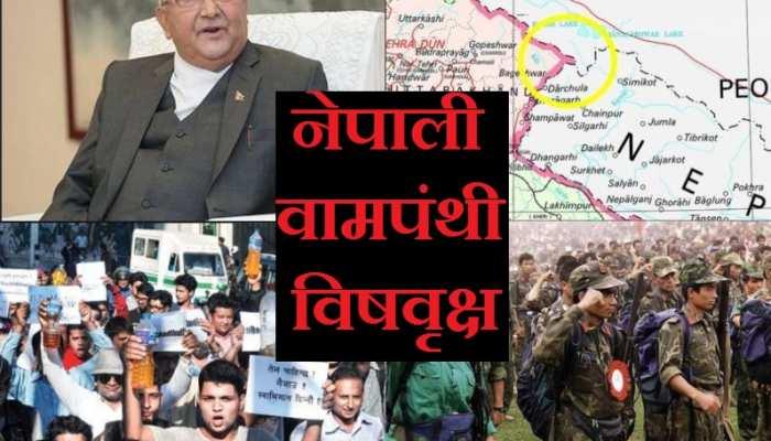 कांग्रेस की मूर्खता और चीन की साजिश से नेपाल में खड़ा हुआ 'वामपंथी विषवृक्ष'