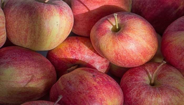 अब सिर्फ कश्मीर में ही नहीं देश भर में होगी सेब की खेती, जानें कैसे हुआ चमत्कार