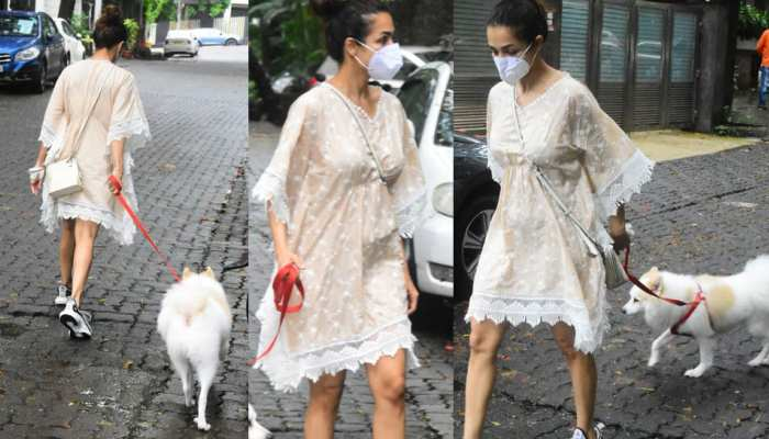 Viral Pics: Malaika Arora seen walking the dog in one piece dress
