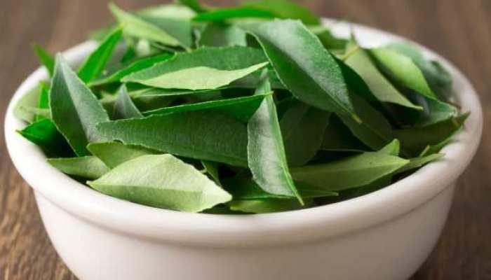 केवल स्वाद ही नहीं सेहत भी बेहतर करती हैं Curry Leaves, रोज खाने से होंगे इतने फायदे