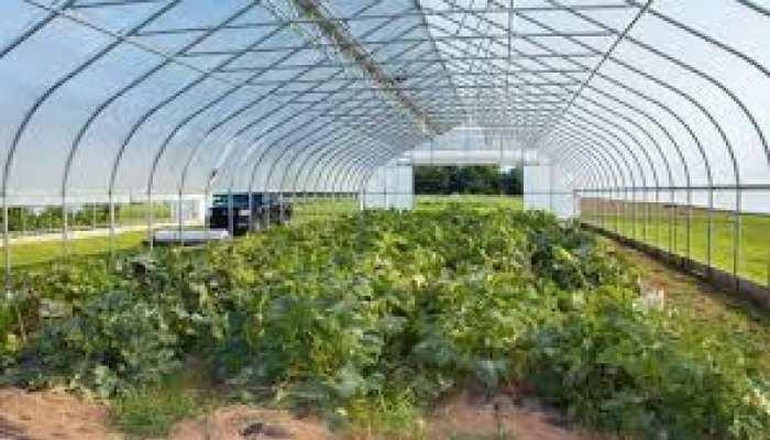 उत्तराखंड सरकार लीज पर देगी अपने बगीचे, 3 कैटेगरी में होगी नीलामी