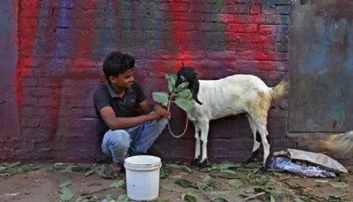 काशी में बकरीद पर कोरोना नियमों का करना होगा पालन, प्रशासन ने की ये अपील