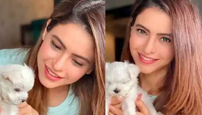 kasautii zindagii kay 2 actress aamna sharif welcomes a new Pet her family see photos