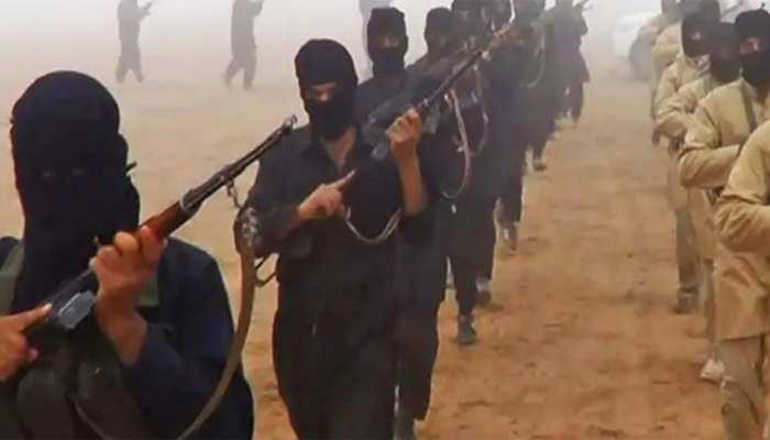 इमरान खान की मुश्किलें बढ़ीं, सीरिया में पकड़े गए पाक आतंकी; अमेरिका खुद एक्शन में आया