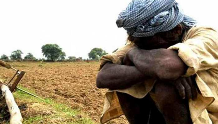 बांसवाड़ा में किसान झेल रहे दोहरी मार, सरकार से लगाई मदद की गुहार