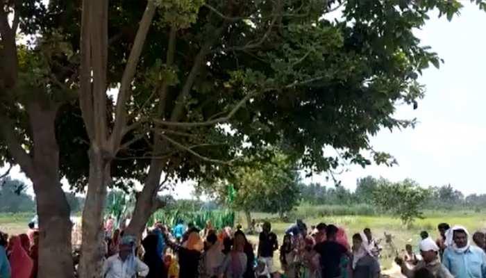 बहराइच में एक पेड़ से बरस रहा पानी, लोग मान रहे दैवीय चमत्कार, वन विभाग ने बताई वजह