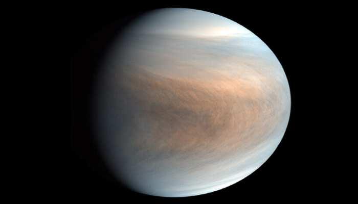 Signs of life found on Venus