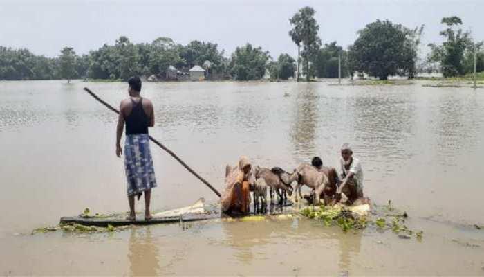 छपरा: बाढ़ से हाहाकार, रोजमर्रा के समान से लेकर पुशओं के चारा तक का संकट