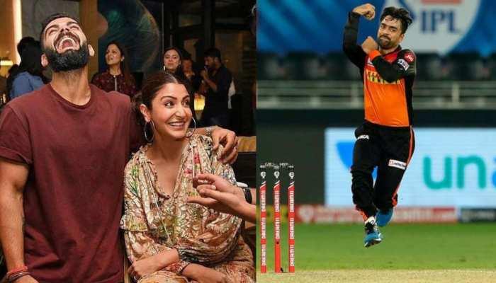 अनुष्का को Google Search दिखा रहा क्रिकेटर राशिद खान की पत्नी, जानिए पूरा मामला