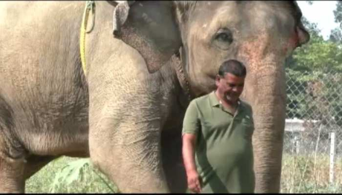 Wildlife lover transferred his 5 crore property on the name of elephants