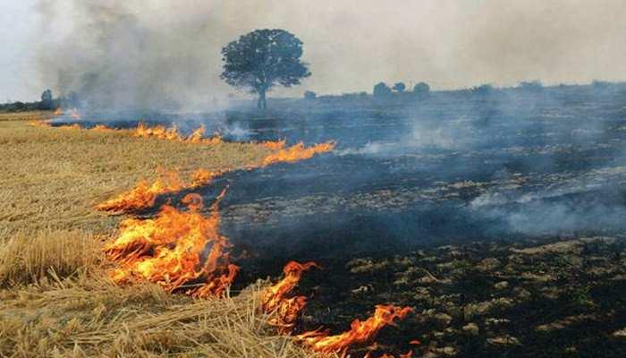 सरकार के दावे बेदम, किसान परेशान, 'पंजाब-हरियाणा में नहीं घटे पराली जलाने के मामले' !
