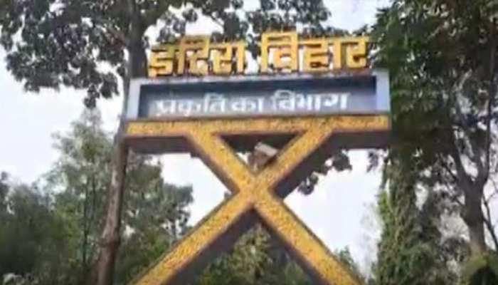 शिक्षा और प्राकृतिक संरक्षण के लिए रायगढ़ में बनाया जा रहा है जैव विविधता पार्क