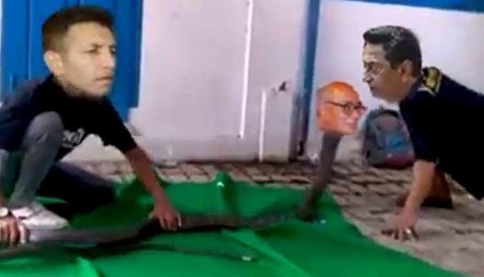दिग्विजय सिंह को नाग, कमलनाथ को सपेरा बता सोशल मीडिया पर वायरल हो रहा वीडियो