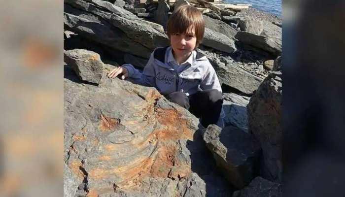 7 साल के बच्चे की बड़ी कामयाबी, 25 करोड़ साल पुरानी चीज खोजी