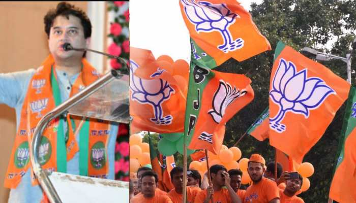 मालवा, बुंदेलखंड, महाकौशल और ग्वालियर में BJP का झंडा, चंबल में फीके पड़े सिंधिया