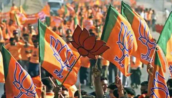 बिहार के बाहर भी 59 सीटों पर हुए चुनाव, BJP का 'स्ट्राइक रेट' जानकर होंगे हैरान