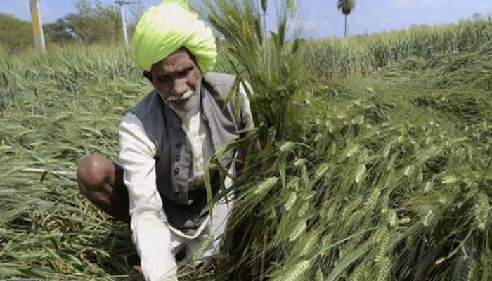 ज़ी मीडिया की खबर का बडा असर, 25 लाख किसानों का दुर्घटना बीमा करवाएगा अपैक्स बैंक