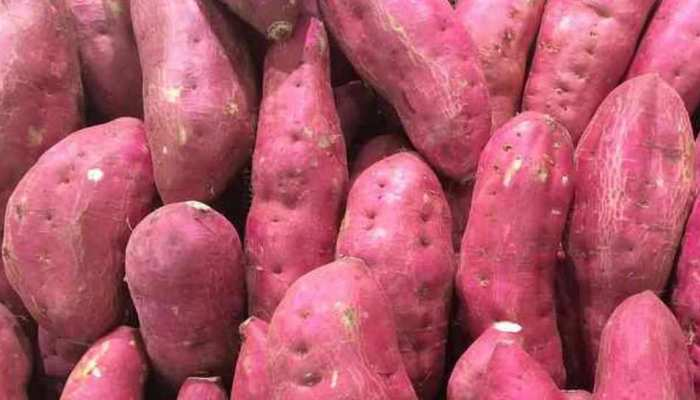 Sweet potato is very beneficial for health know its benefits and its properties