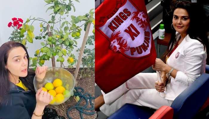 IPL 2020 के बाद KXIP की मालकिन Preity Zinta कर रहीं हैं घर की खेती