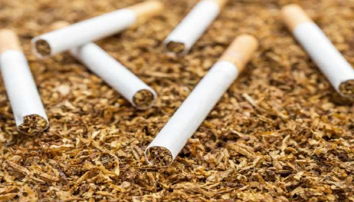 बोकारो: सरकार का बड़ा फैसला, लाइसेंस न होने पर तंबाकू विक्रेता के खिलाफ होगी कारवाई